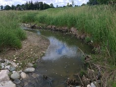 7 ways to tell if a Stream Restoration Project is successful